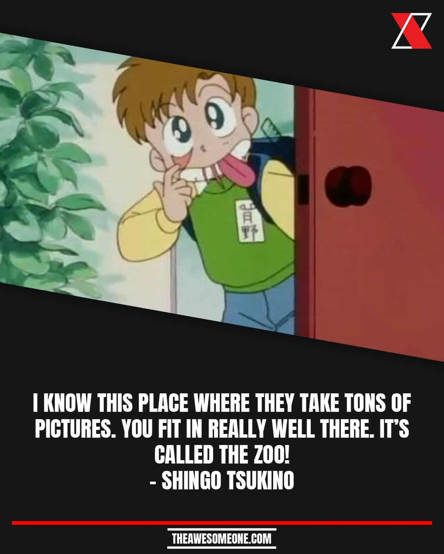 Sailor Moon Quotes Shingo Tsukino