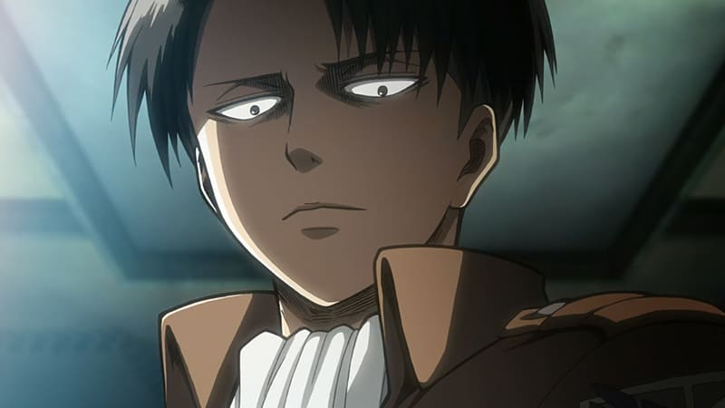 Attack on Titan Fans Favourite Character Levi